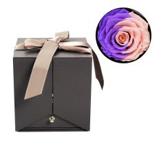 Шкатулка для драгоценностей Best Wishes Purple-Pink