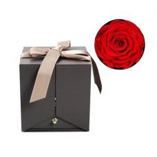 Шкатулка для драгоценностей Best Wishes Red